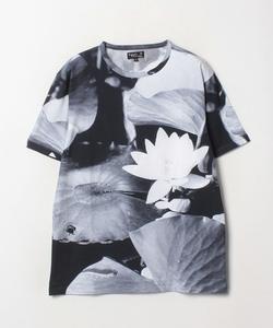 NS68 TS フォトプリントTシャツ