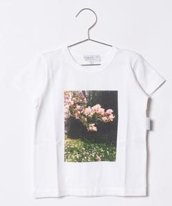NQ78 E TS Tシャツ
