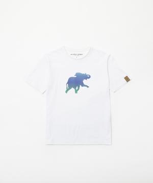 11TS54 <新作> [プリントTシャツ] ウィメンズ ホワイト