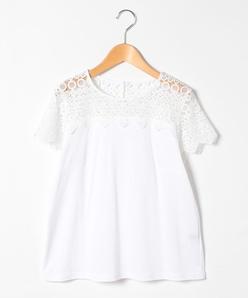 【大きいサイズ】【洗える】ケミカルレース切替Tシャツ